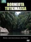 Borneota tutkimassa