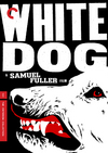 Valkoinen koira